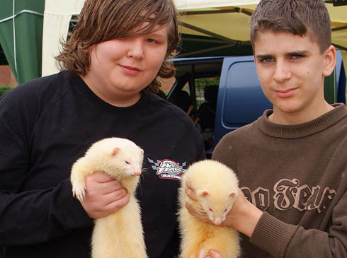 FERRETS ARE FUN SAY JAM & ZACK at SPEEN 9th June 2007